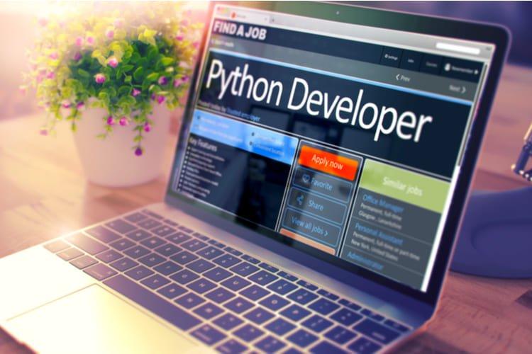 Python Developer - Job Find Concept
