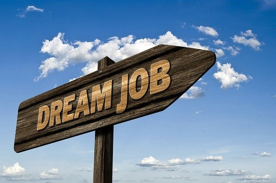 How to nail your dream job