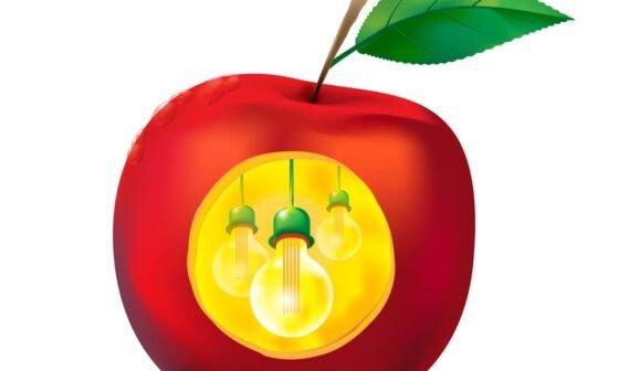 The light bulb represents the idea